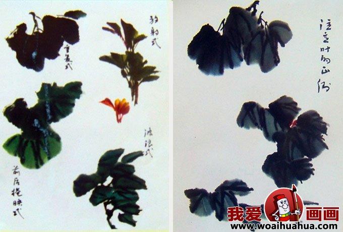 国画写意牡丹的画法步骤,牡丹的花朵叶子枝干画法(2)图片