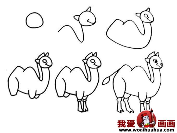 儿童简笔画教程大全 骆驼的画法图片 简笔画教程 我爱画画网