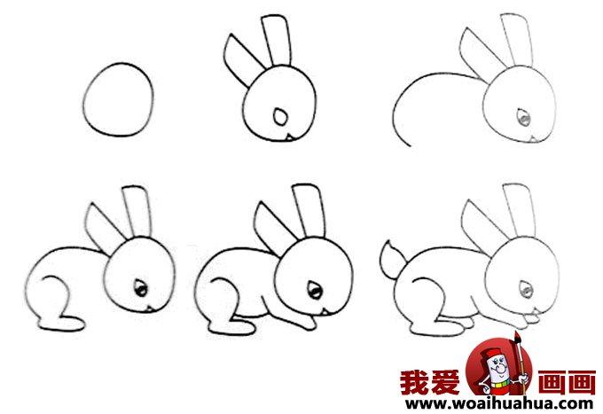 儿童简笔画教程大全 -小白兔的画法图片