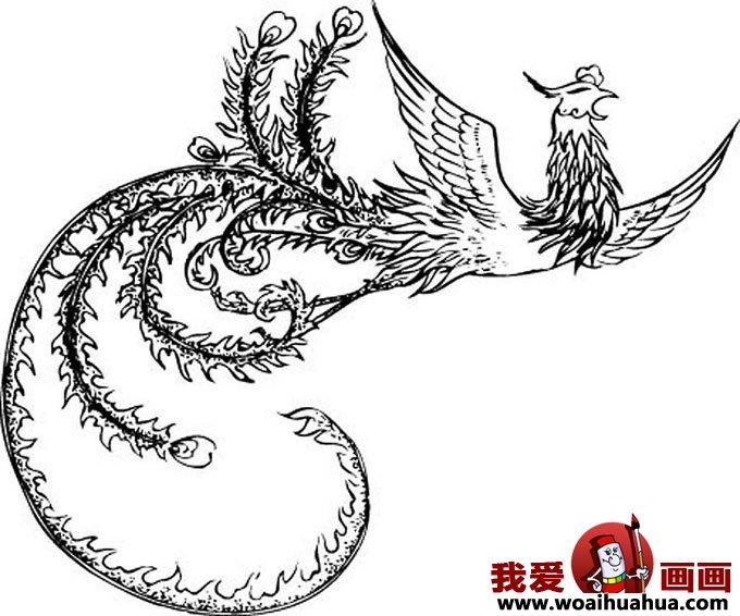 什么是凤凰,关于凤凰的白描绘画图片组图(2)