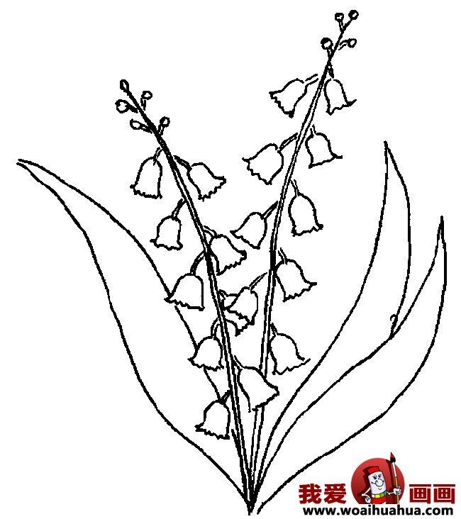 九种简笔画花卉植物图片欣赏(5)