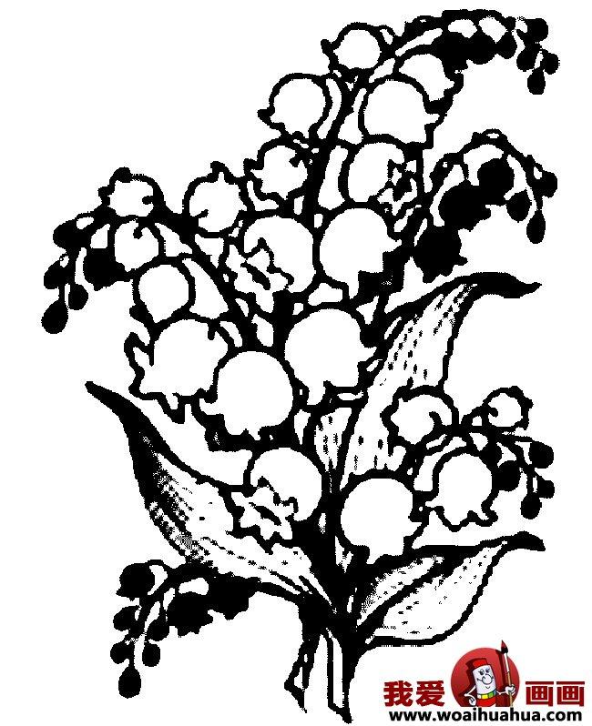 九种简笔画花卉植物图片欣赏(6)_儿童画教程_学画画