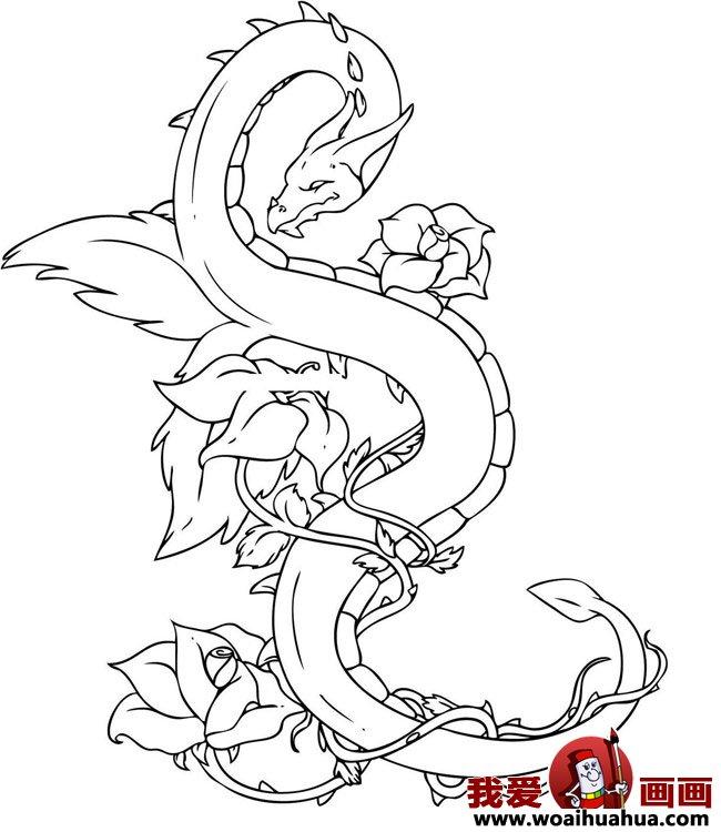 简笔画龙:各种卡通龙的简笔画图片大全(3)
