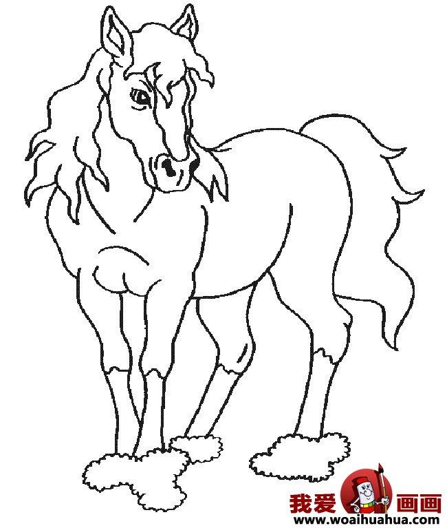 简笔画马,关于马的简笔画10副(5)_儿童画教程_学画画
