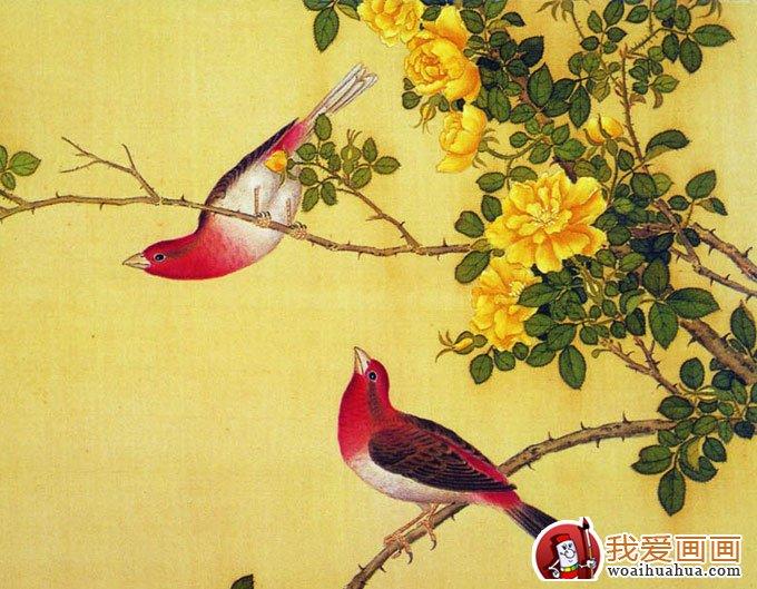 花鸟工笔画入门基础知识之渲染色彩12种用色方法