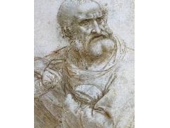 达芬奇的画,达芬奇的人物素描绘画作品大全