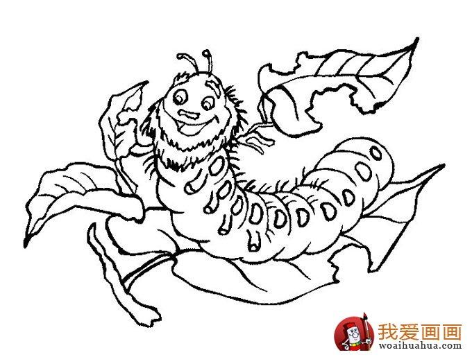 我爱画画    毛毛虫儿童简笔画:毛毛虫简笔画可爱