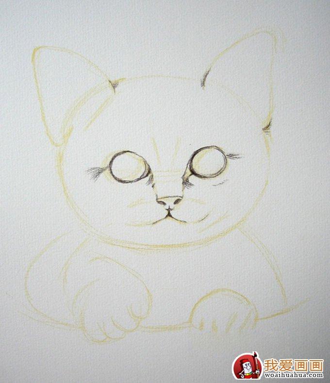 画猫咪的教程:彩色铅笔绘画可爱的小猫咪详细步骤(2)
