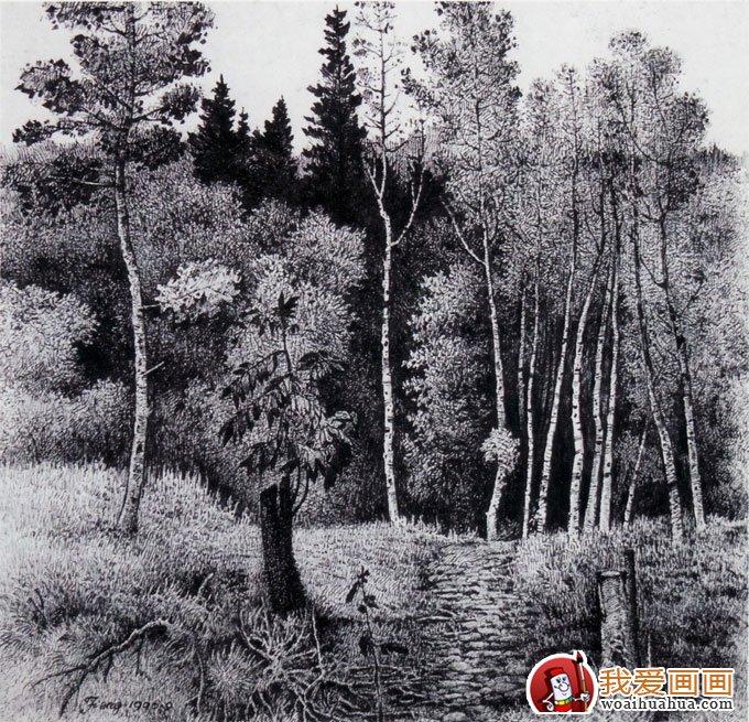 风景钢笔画图片:手绘钢笔画写生及速写作品(9)