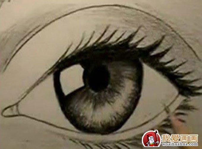 16个步骤教你用铅笔画眼睛手绘素描教程(6)