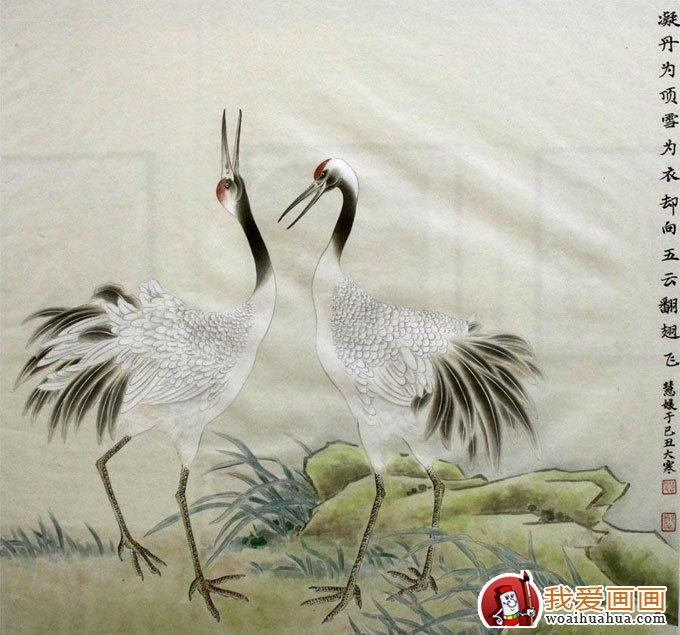 仙鹤国画图片 10P 工笔国画仙鹤精品欣赏 3图片