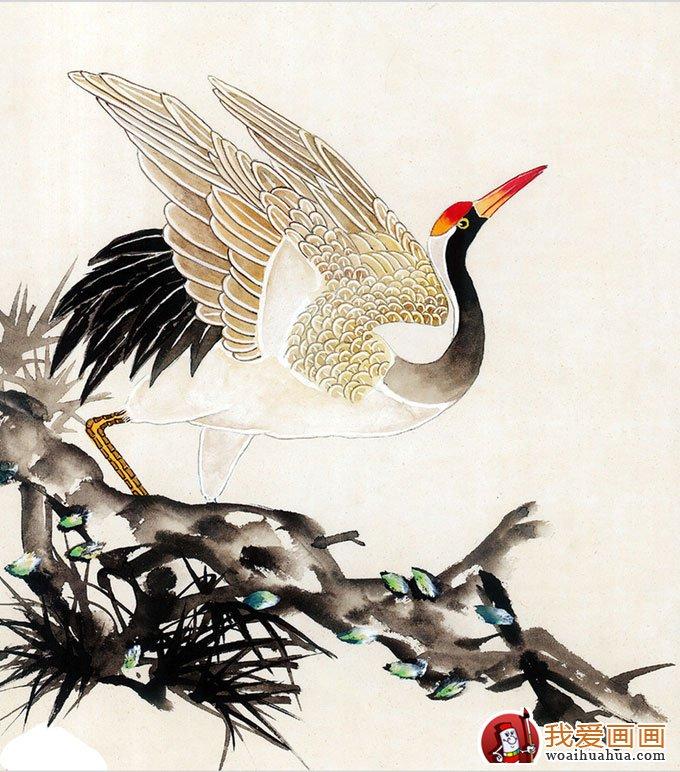 仙鹤国画图片(10p)工笔国画仙鹤精品欣赏(5)