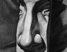 石膏像鼻子的素描画图片:各种鼻子素描