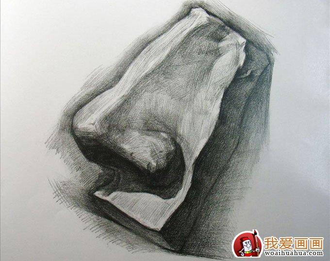 鼻子侧面石膏像的画法图解步骤