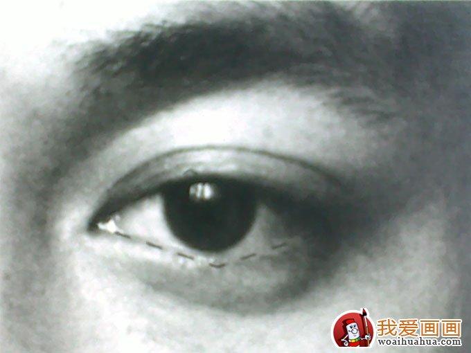 素描眼睛的画法:素描眼睛结构解析及写生图文步骤(2)