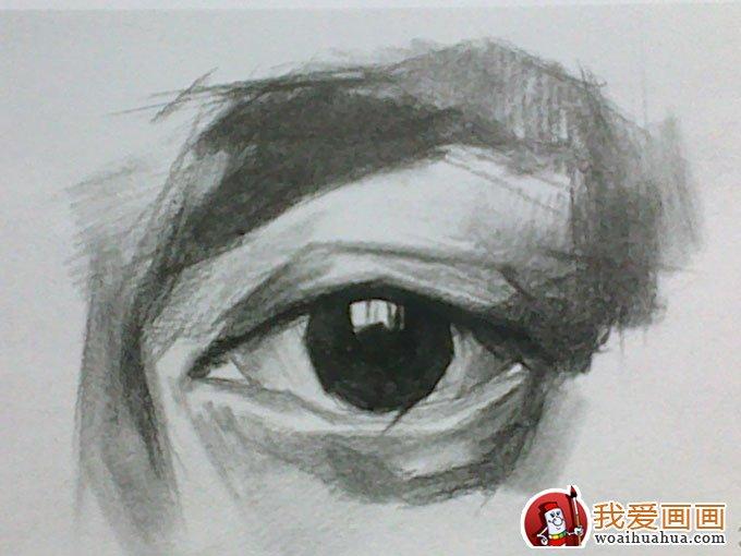 素描眼睛的画法:素描眼睛结构解析及写生图文步骤(5)