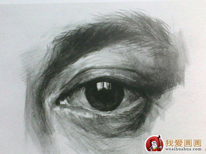 素描眼睛的画法:素描眼睛结构解析及写生图文步骤(6)