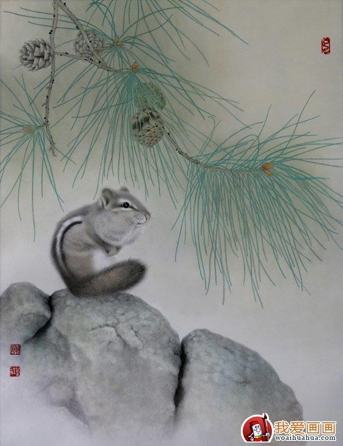 各种松树的工笔国画图片及画法(2)