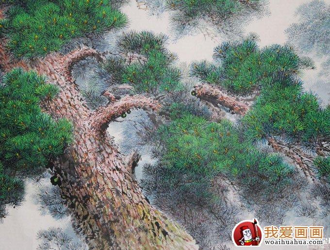 各种松树的工笔国画图片及画法(6)