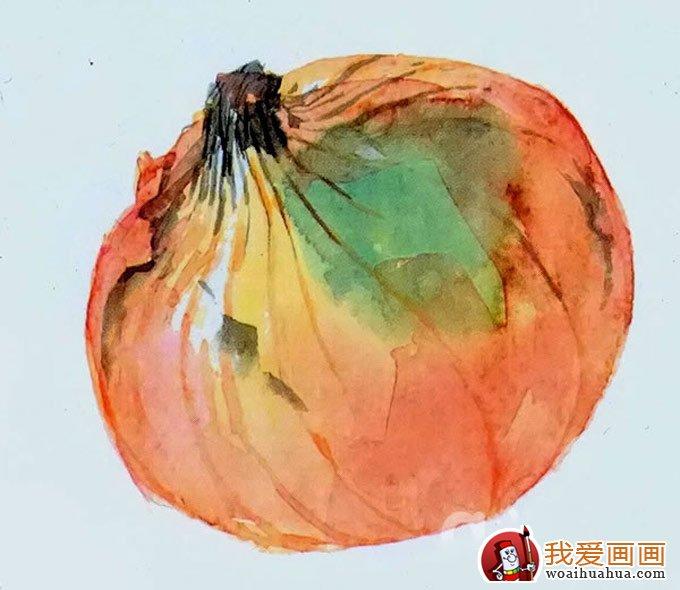 水彩画洋葱的画法教程(八)
