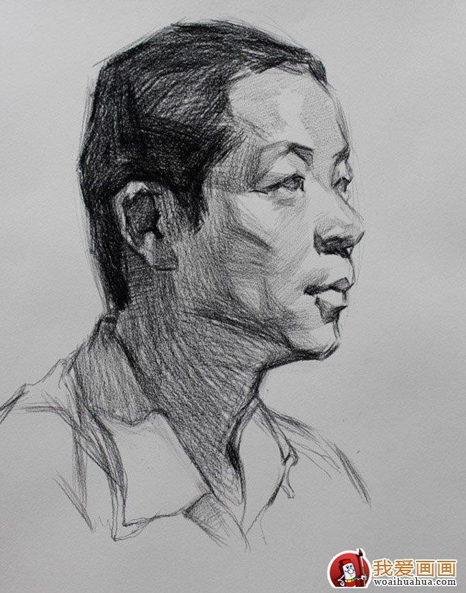 中年男子人物头像素描绘画教程图文详解(2)