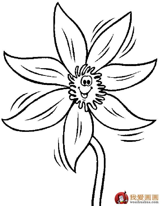 植物花儿简笔画图片,包含了牡丹,菊花,月季,玫瑰,兰花,仙人掌,百合花