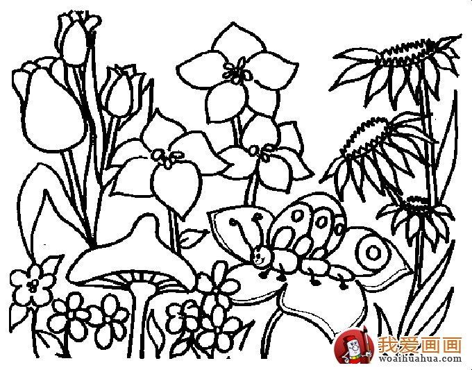 简笔画花卉大全,各种植物花儿简笔画图片26副 上 4
