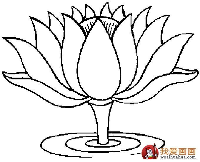 各种植物简笔画图片_以植物为主题的简笔画