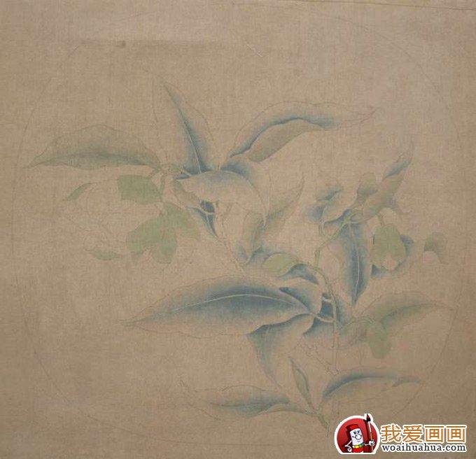国画工笔花卉教程:临摹工笔画《夜合花图》的步骤(4)