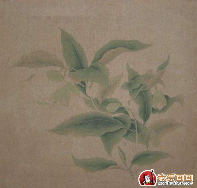国画工笔花卉教程:临摹工笔画《夜合花图》的步骤(5)