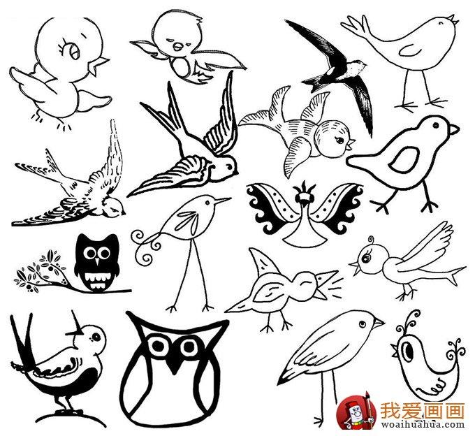 简笔画小鸟图片:小鸟简笔画图片大全(6)