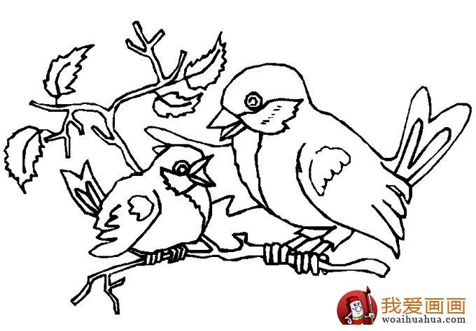 简笔画小鸟图片:小鸟简笔画图片大全(7)
