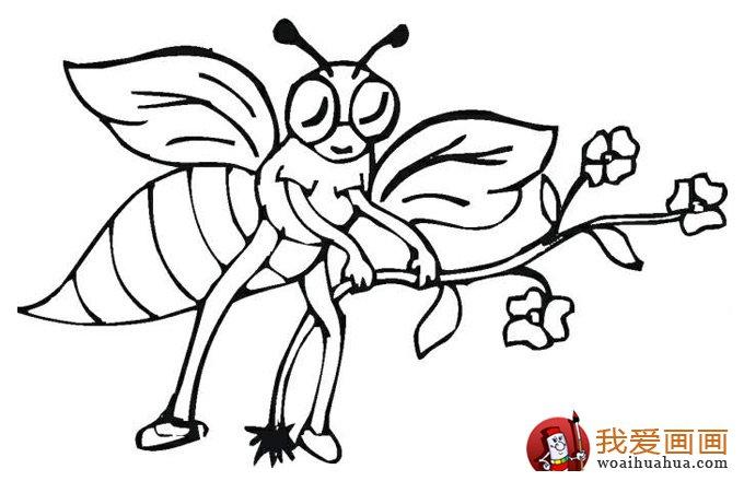 小蜜蜂简笔画,蜜蜂简笔画图片大全 3