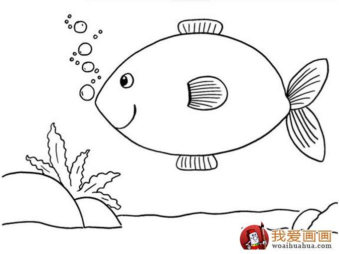 简笔画鱼 各种各样鱼的简笔画图片大全(5)