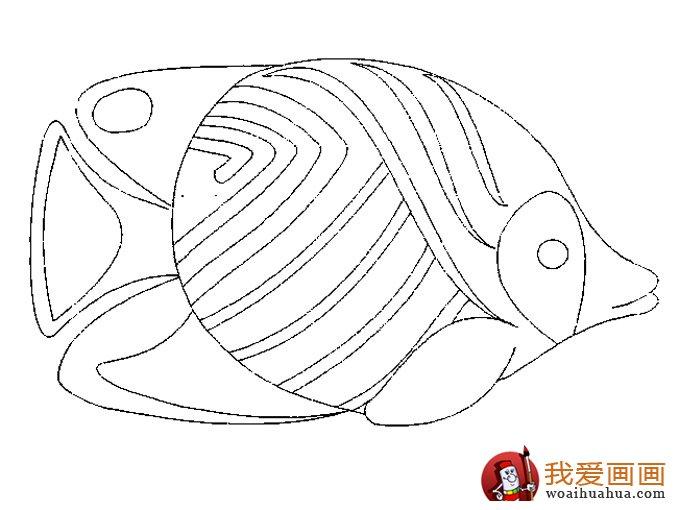 简笔画鱼 各种各样鱼的简笔画图片大全(8)