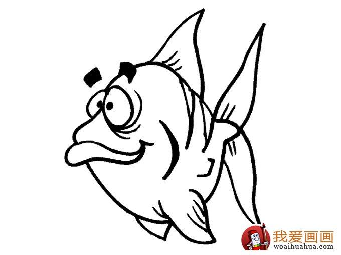 简笔画鱼 各种各样鱼的简笔画图片大全(9)