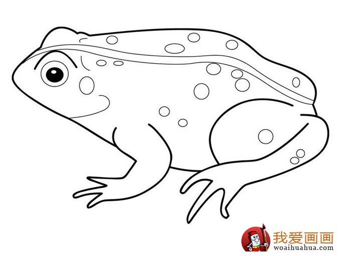 简笔画青蛙,简单的青蛙简笔画图片大全