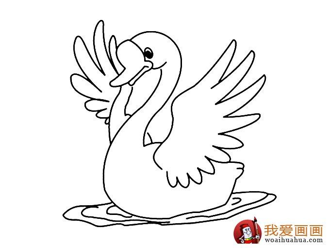 简笔画天鹅:7副高清天鹅的简笔画图片(2)