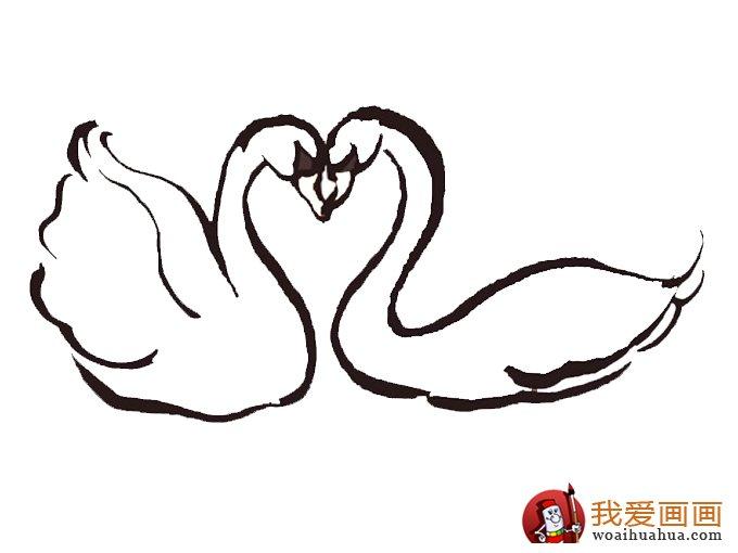简笔画天鹅:7副高清天鹅的简笔画图片(4)