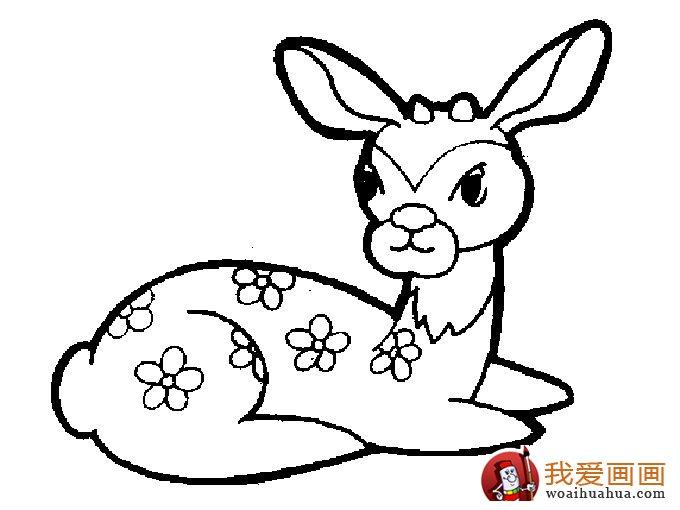 简笔画 > 简笔画梅花鹿:超可爱的梅花鹿简笔画图片5副   去过动物园的