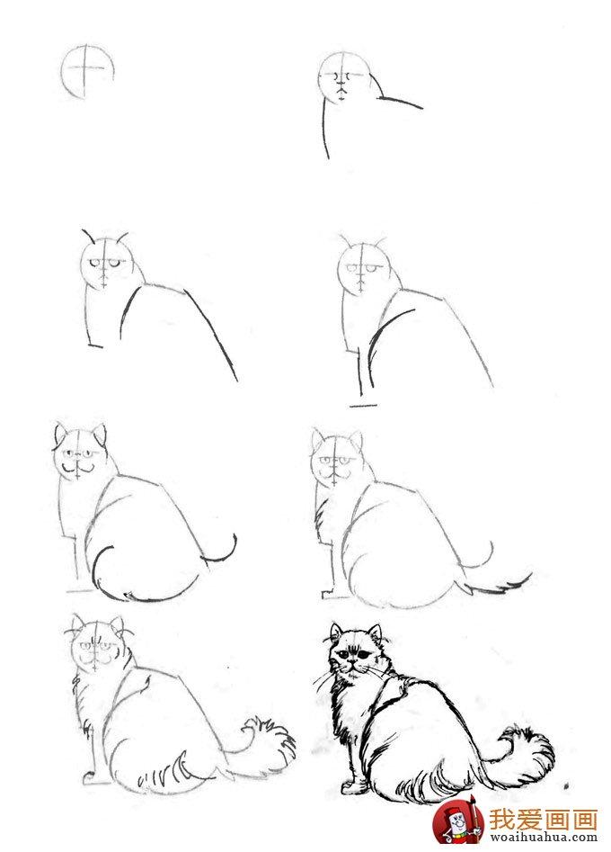 猫的22种画法 6 猫咪线描速写教程之三分之二侧卧回顾姿态
