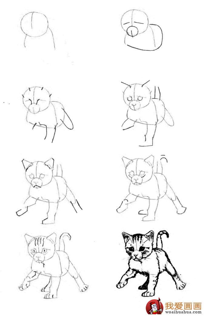猫的22种画法(19)学走路的小猫咪线描速写教程图片