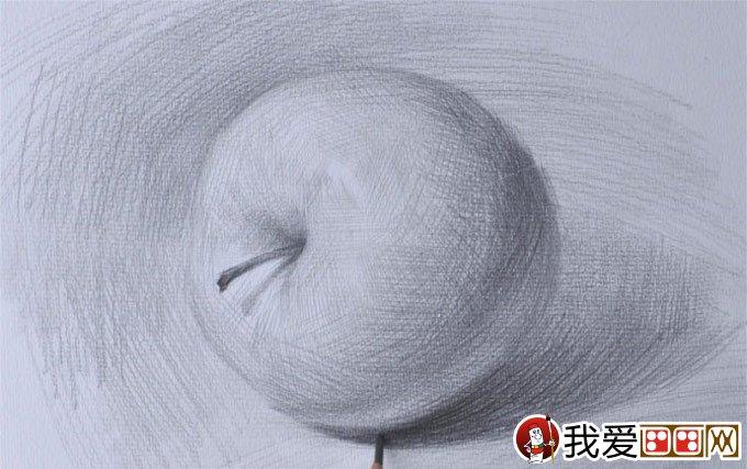 侧立苹果的明暗素描图文教程:苹果素描写生详细步骤(7