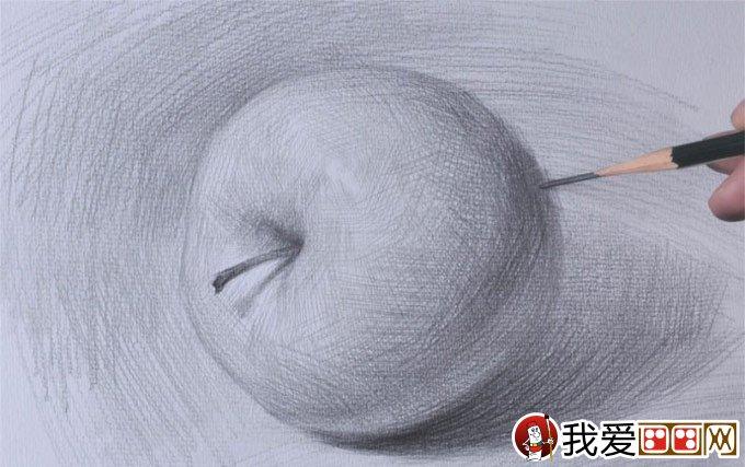 侧立苹果的明暗素描图文教程:苹果素描写生详细步骤(7图片