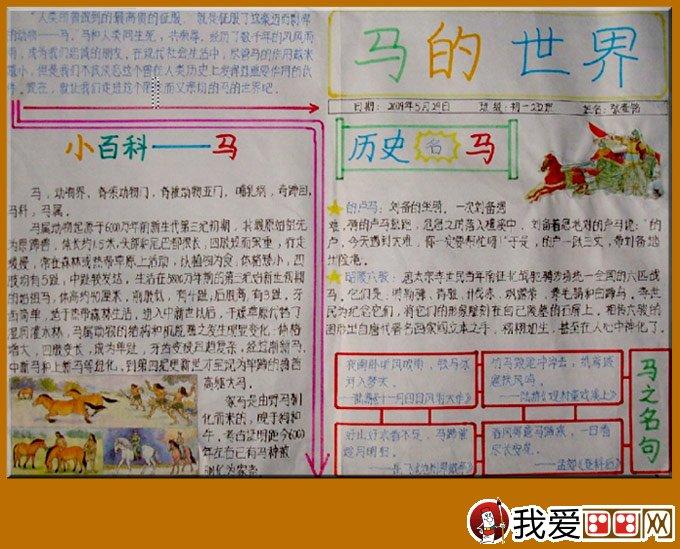 关于马的手抄报:2014马年春节手抄报图片