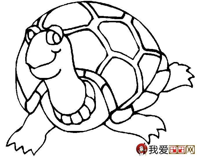 乌龟简笔画图片大全:12个可爱的小乌龟(3)