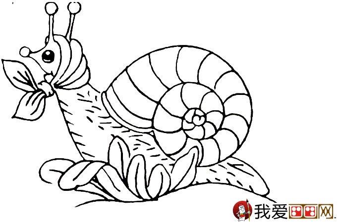 幼儿简笔画蜗牛:可爱小蜗牛简笔画图片大全(5)