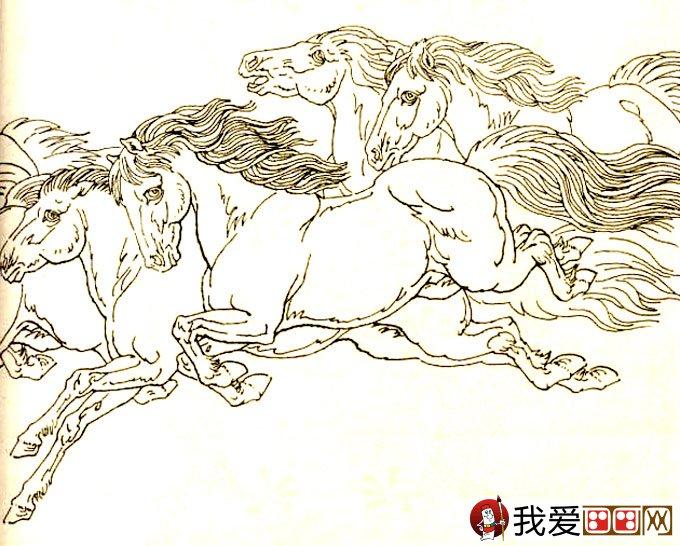 学画画 素描教程 素描动物 > 马的素描图片大全:马的白描图骏马线描