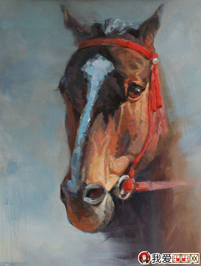 马的油画:6副马的头部特写油画作品图片