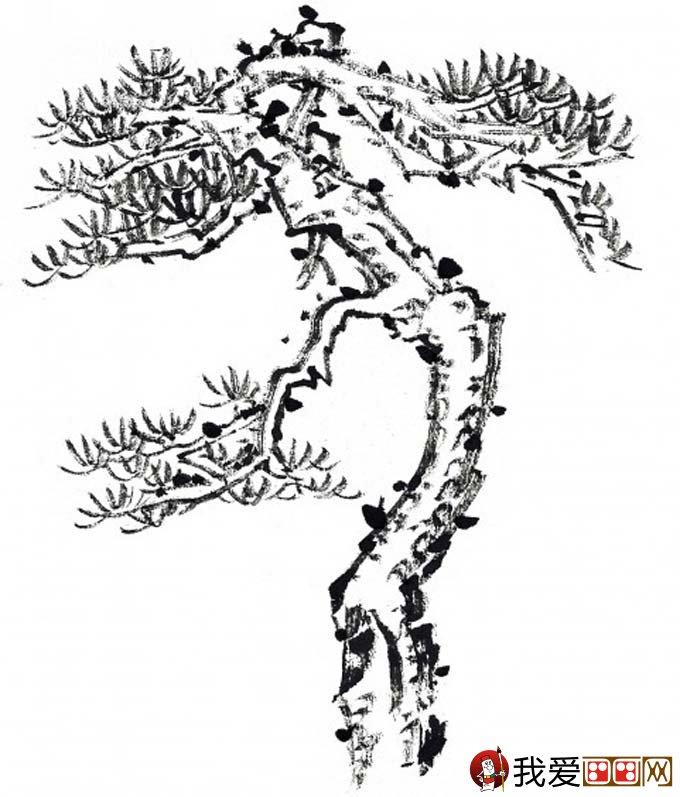 国画松树的画法:松柏松树水墨画图片大全07